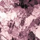 spectrum-artique-1408A